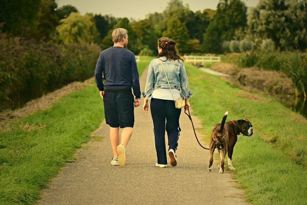 Can you lose weight by walking? Walking for Weight Loss